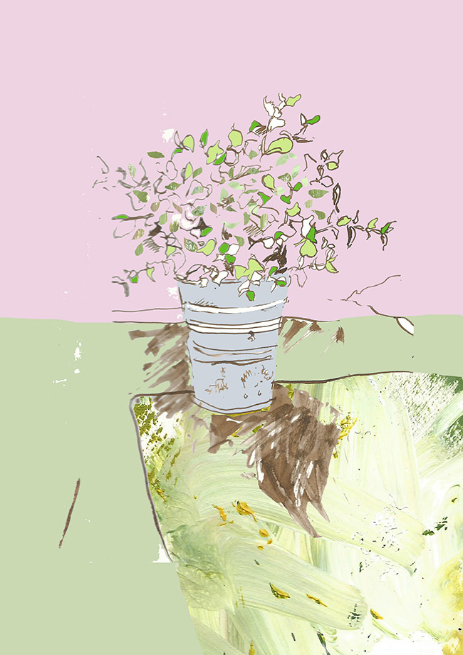 Plant Pot Editorial Illustration