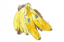 Bananas Advertising Illustration