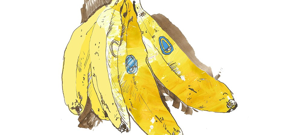 Bananas Advertising Illustration