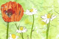Flowers Editorial Illustration