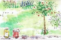 Garden article illustration