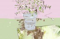 Plant Pot Editorial Illustration