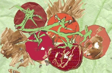Tomatoes Editorial Illustration