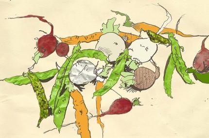 Vegetables Editorial Illustration